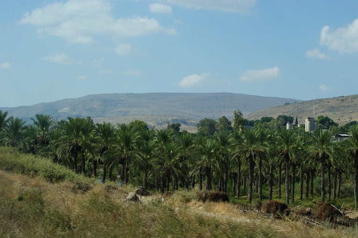 Дорога на Иордан2 (700x466, 282Kb)