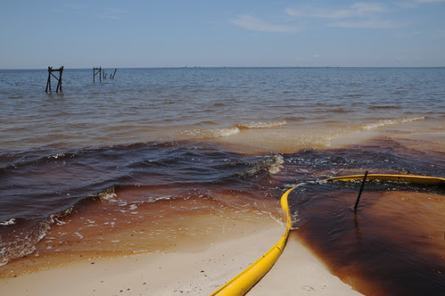 oil in water and oil on beach with boom__7320 web