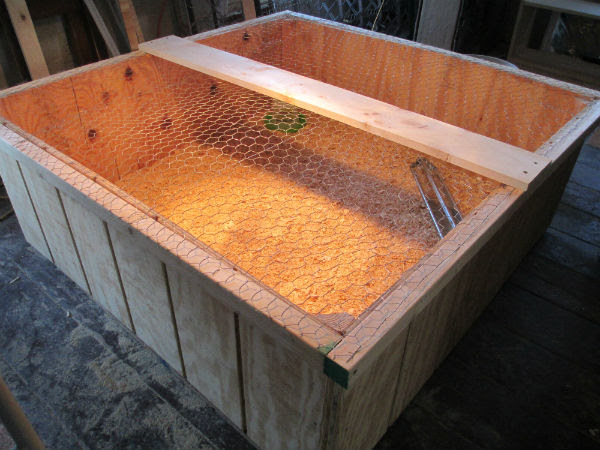 Diy Chicken Brooder Feeder | homemade