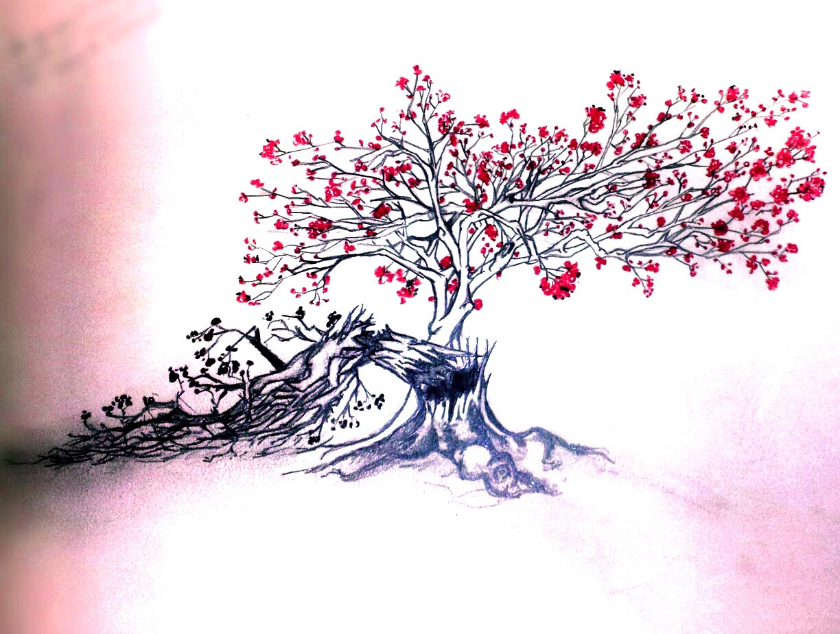 Half Dead Half Alive Tree Drawing At Getdrawingscom Free For