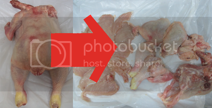 photo chicken_zps8a47ee1f.png