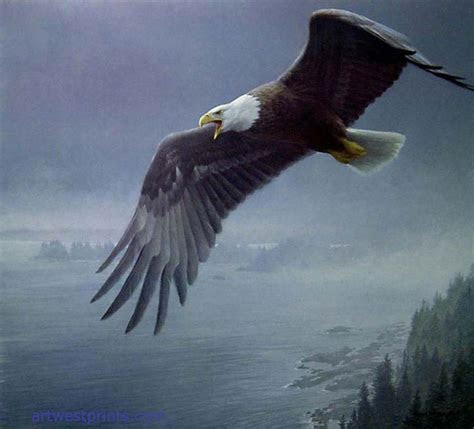 Robert Bateman Wildlife Fine art prints on canvas