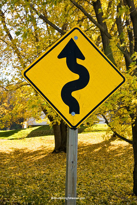 Squiggly Road Sign, Sauk County, Wisconsin