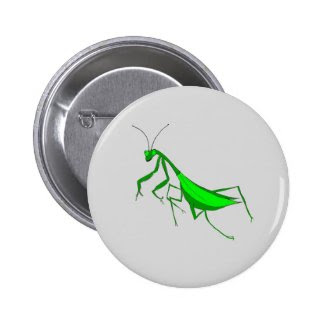 Praying Mantis on Pinback Button