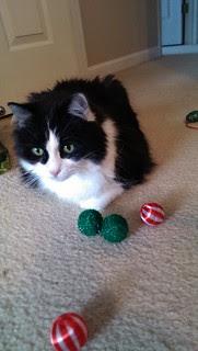 Josie and the Christmas balls