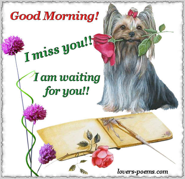 Good Morning I Miss You I Am Waiting For You Pictures Photos