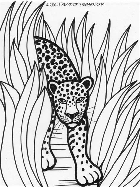 rainforest printable coloring pages  coloring barn
