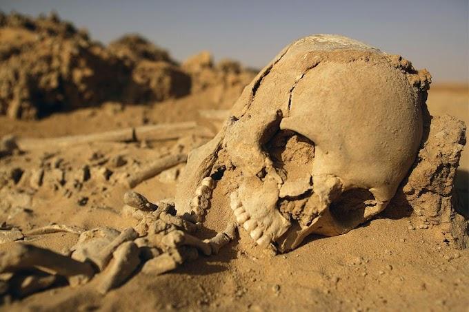 Marruecos y el genocidio saharaui del que nadie quiere hablar, 44 de la matanza de Um Draiga