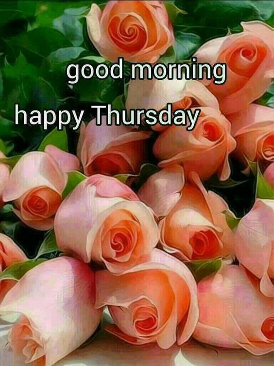 Good Morning Happy Thursday Flowers Pictures Photos And Images For