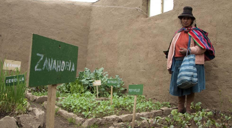Pascuala Trujillo muestra su 'fitotoldo' con los espacios separados para los diferentes cultivos de verduras y hortalizas.