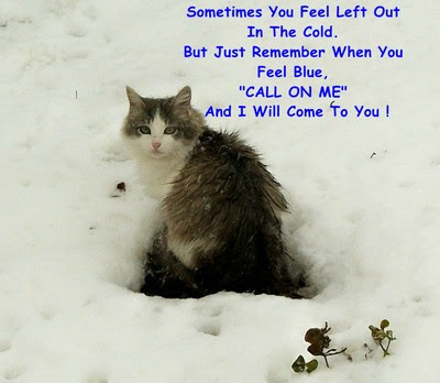 Here For You Kitty Free Friends Forever Ecards Greeting Cards