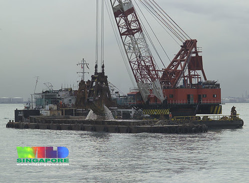 Threats to Singapore marinelife: dredging