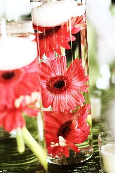 gerbera daisy centerpieces for weddings   Google Search