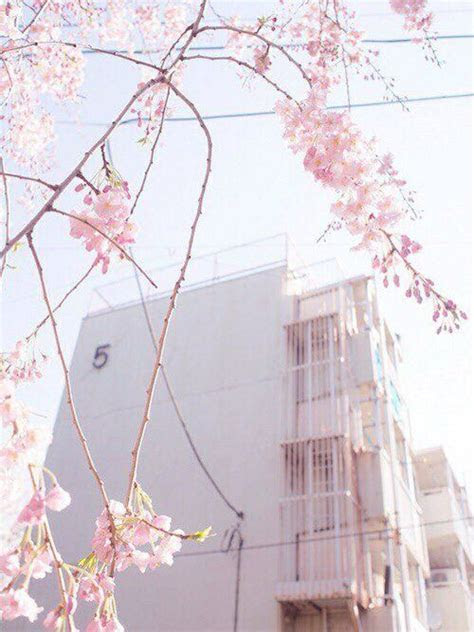 color theme pink pink aesthetic korean aesthetic