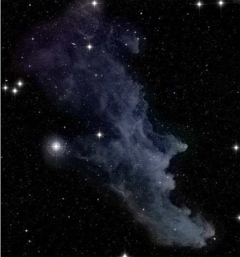 The Witch Head Nebula, taken on October 24, 2013. Credit and copyright:  ftherrmann2012 on Flickr.