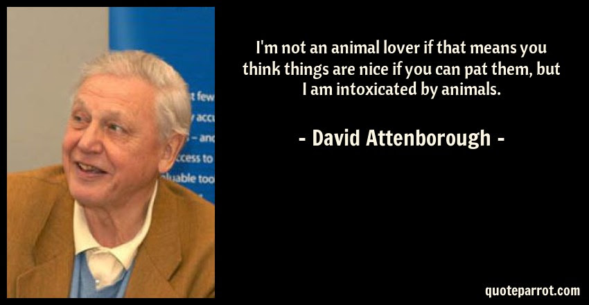 Im Not An Animal Lover If That Means You Think Things By David