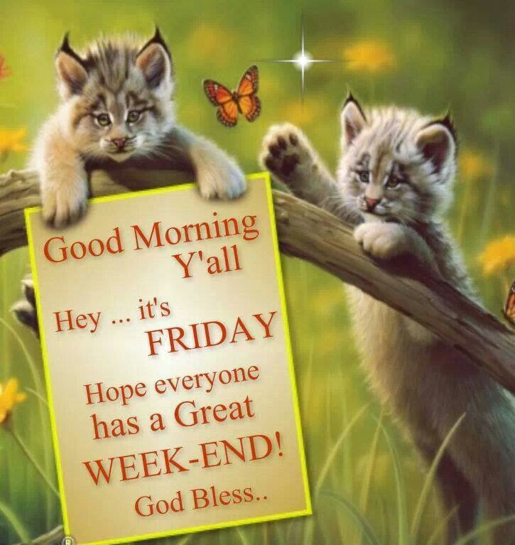 Good Morning Yall Hey Its Friday Pictures Photos And Images For