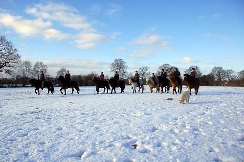 eine Gruppe im Schnee