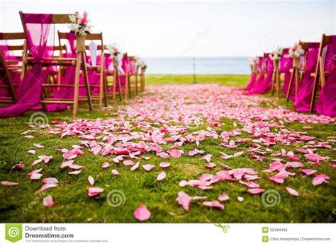 Outdoor Wedding aisle stock photo. Image of chairs