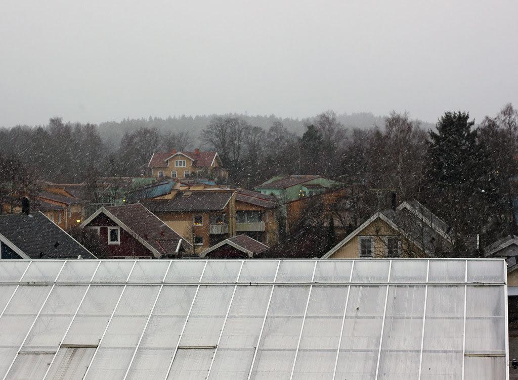 It snowed today...