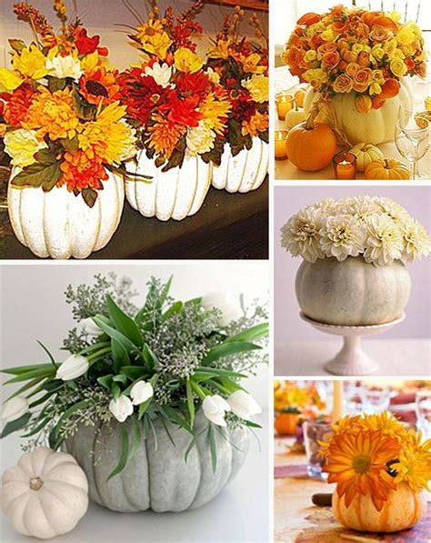 White pumpkins, Fall wedding and Pumpkins on Pinterest