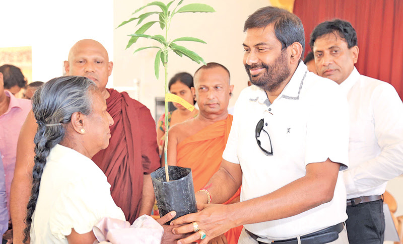 Minister Daya Gamage offering a mango plant to a woman in the Ampara District.