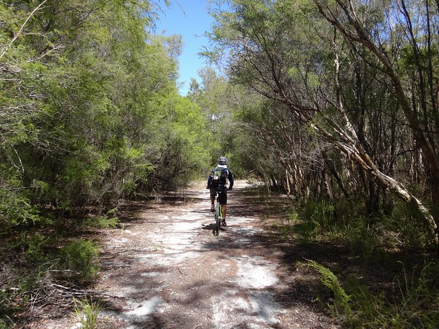 Russell Island Trails