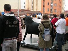Amposta: Manifestació de caçadors, defensors dels bous, pagesos,...