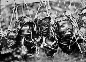 Kisah Suku Pemburu Kepala