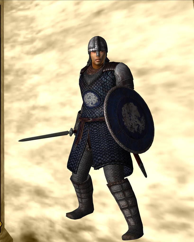 guard armor - chorrol 10