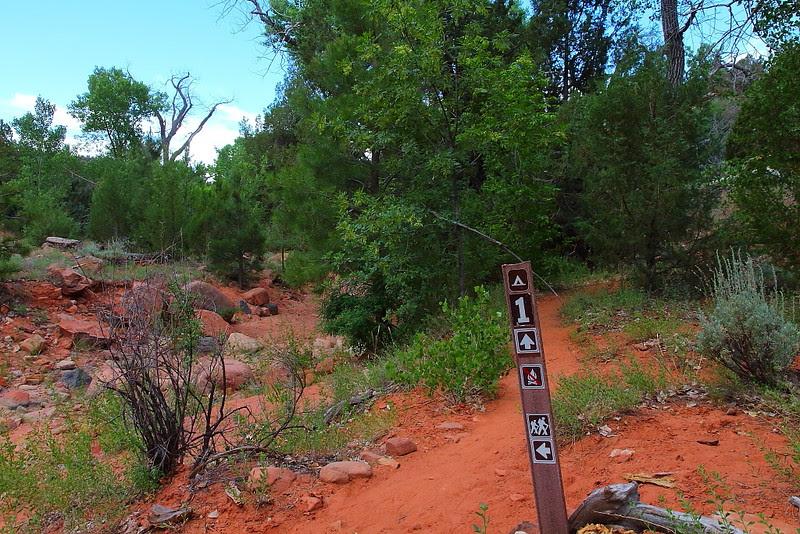 IMG_5758 Kolob Arch/La Verkin Trail, Zion National Park