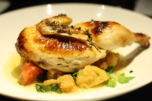Roasted Chicken over Panzanella