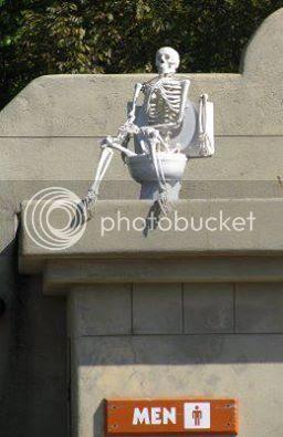 Skeleton on a toilet picture