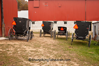 Amish Buggies at Amish Bakery, Vernon County, Wisconsin