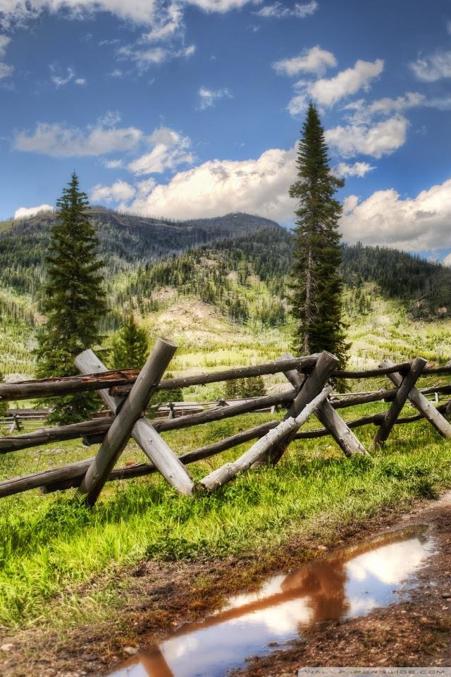 Yellowstone National Park Ultra Hd Desktop Background Wallpaper For 4k Uhd Tv Tablet Smartphone