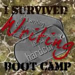 I completed my Hardcore Emergency Beta boot camp