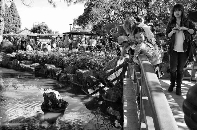 Auburn Botanical Garden 03