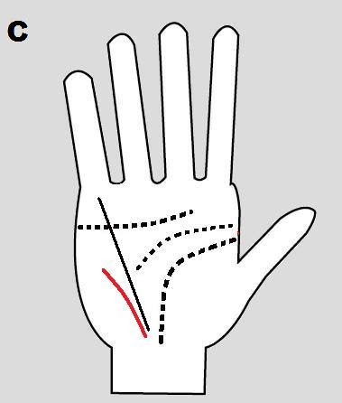 the via lascivia in palmistry