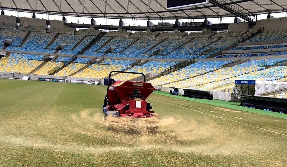 Sementes de inverno e areia foram aplicadas no gramado (Foto: Divulgação)