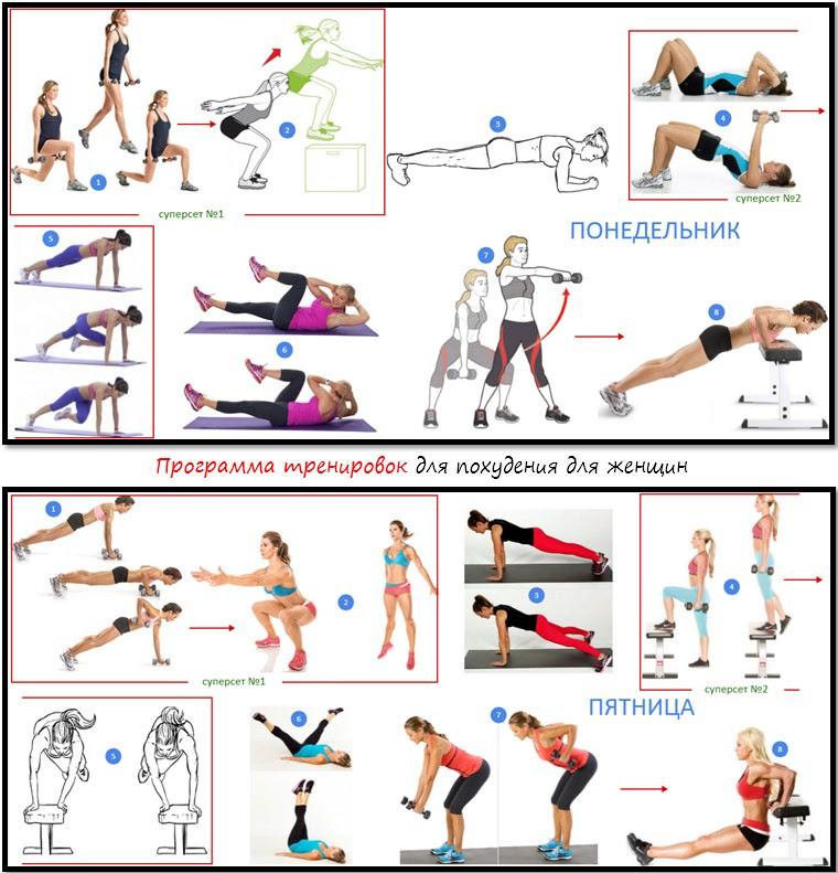 африки комплекс упражнений в тренажерном зале картинки хронологическая