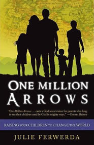 One Million Arrows book cover- by Julie Ferwerda