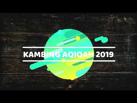 Harga Kambing 2019 Surabaya, Sidoarjo, Gresik dan Kota lainnya