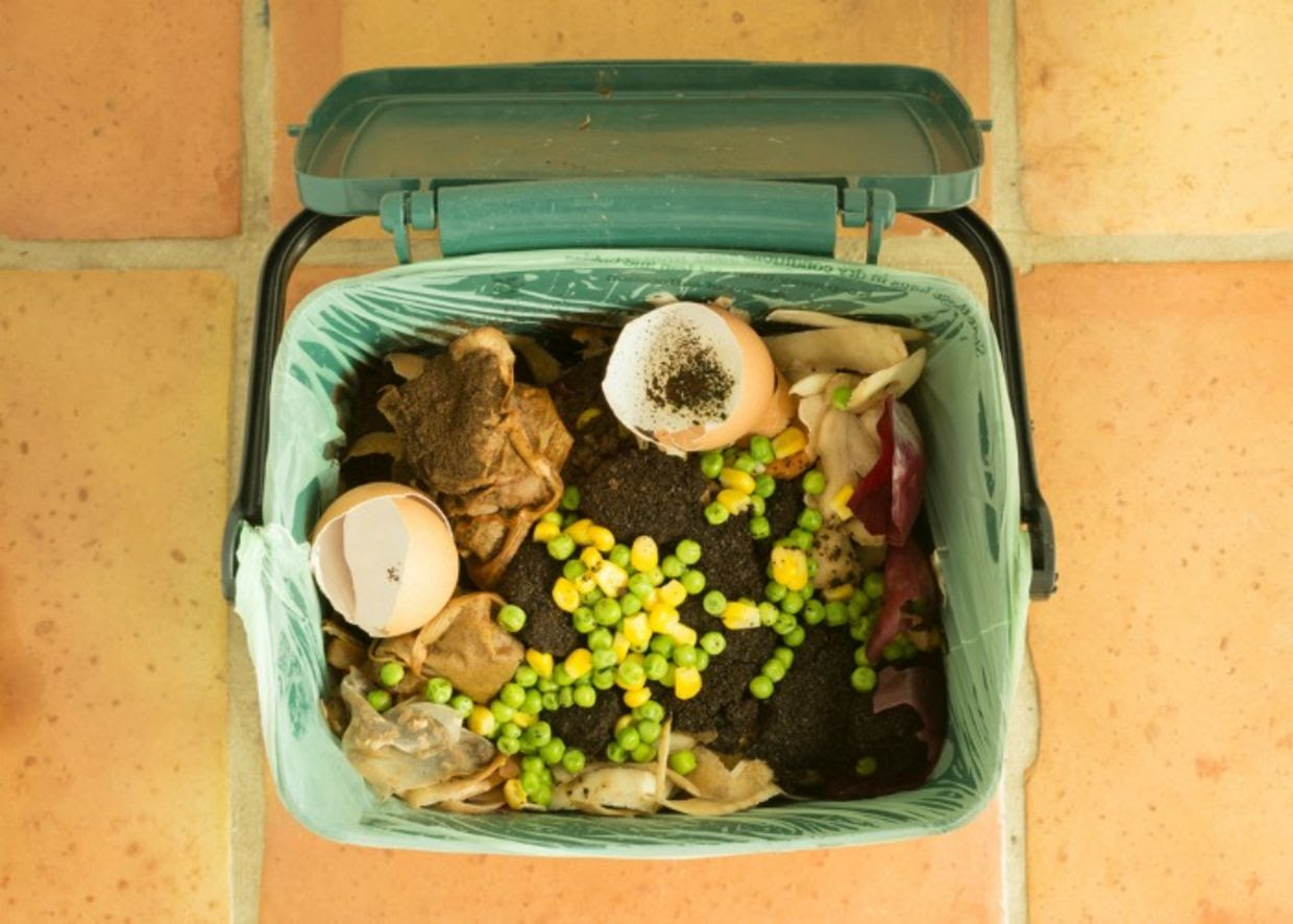compost bin with food