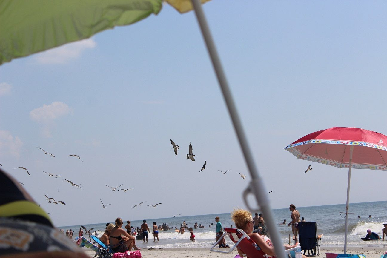 photo beach113_zps010c9eca.jpg