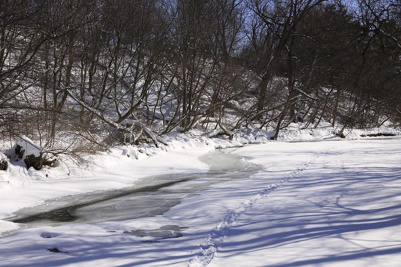 iced over creek2