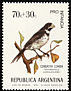 Double-collared Seedeater Sporophila caerulescens