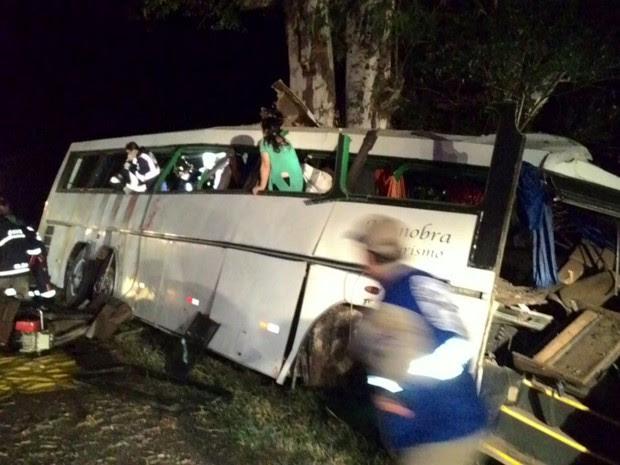 Situação ocorreu por volta da 1h45 deste sábado (9), em Mamborê. (Foto: Divulgação/PRF)