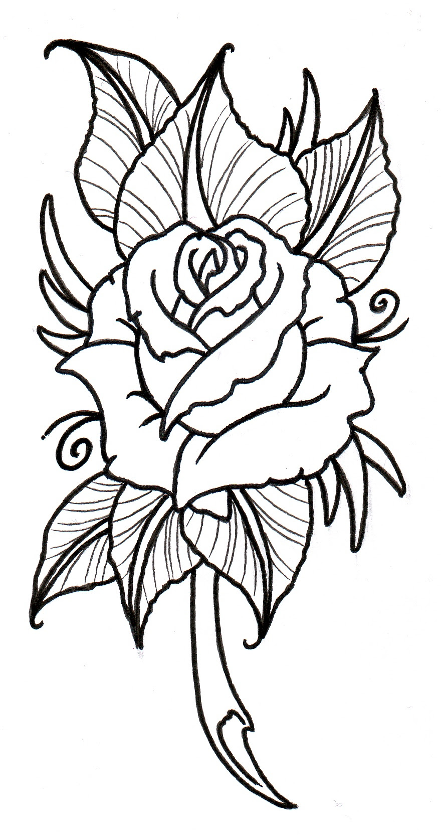 Free Rose Outline Download Free Clip Art Free Clip Art On Clipart