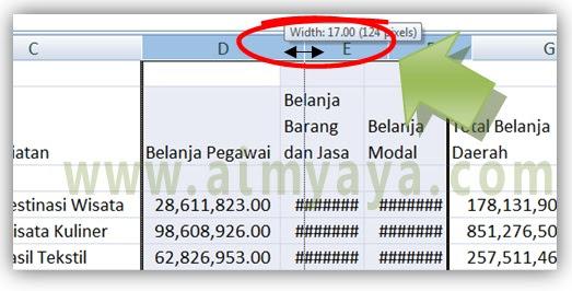 Gambar: Cara Mengatur ukuran  lebar kolom agar sama dengan cara visual di Microsoft Excel