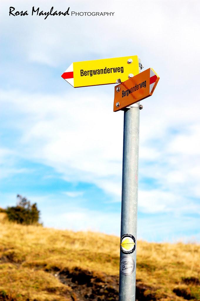 Plum Tart Lenk Betelberg 1 6 bis